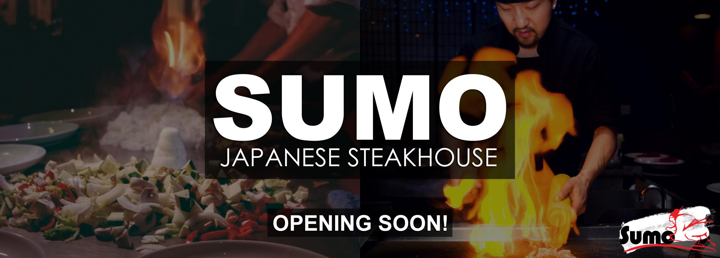 Sumo Hero Updated Hero Image